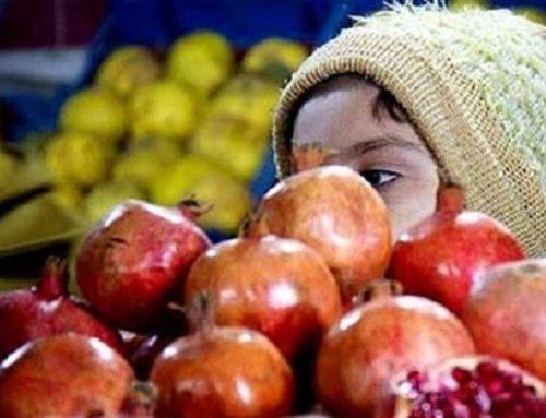 سبد میوه شب یلدا